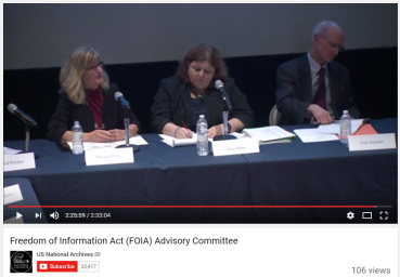 The Justice Department's Melanie Pustay answers (sort of) questions during the FOIA Advisory Committee meeting.